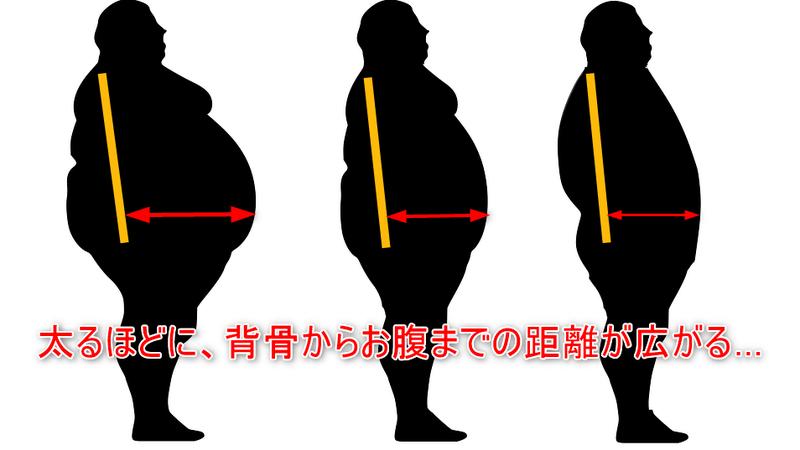 お腹の大きさと腰への負担