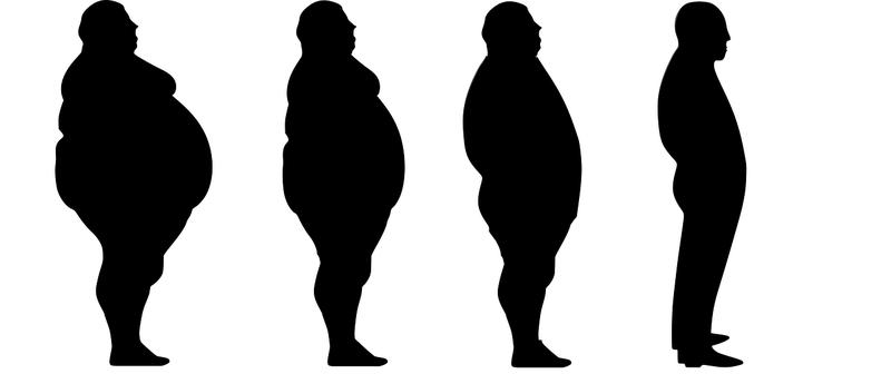 肥満 シルエット