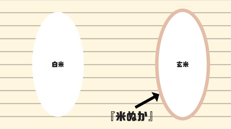 白米と玄米 比較