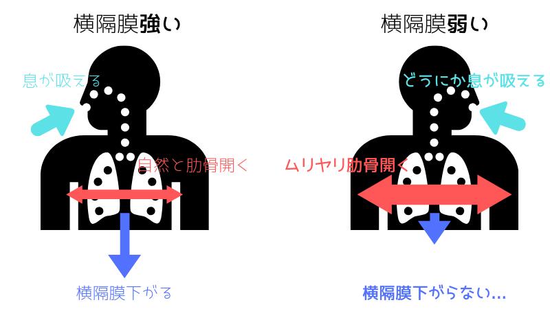横隔膜が弱い場合の呼吸